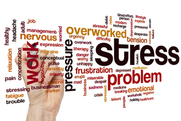 stress management counselling chelmsford essex